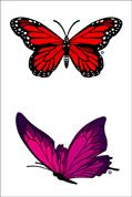 Red and Pink Butterfly Waterproof Swim Tattoos
