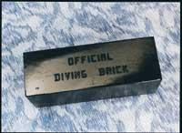Water-Gear-Diving-Brick